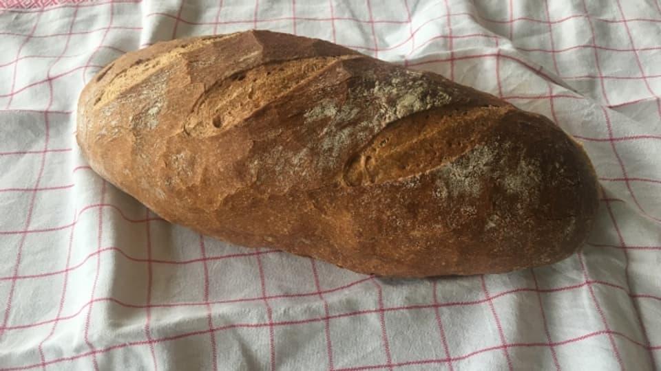 Das Zürcher Brot - Das Brot, das den Schweizer Geschmack trifft.