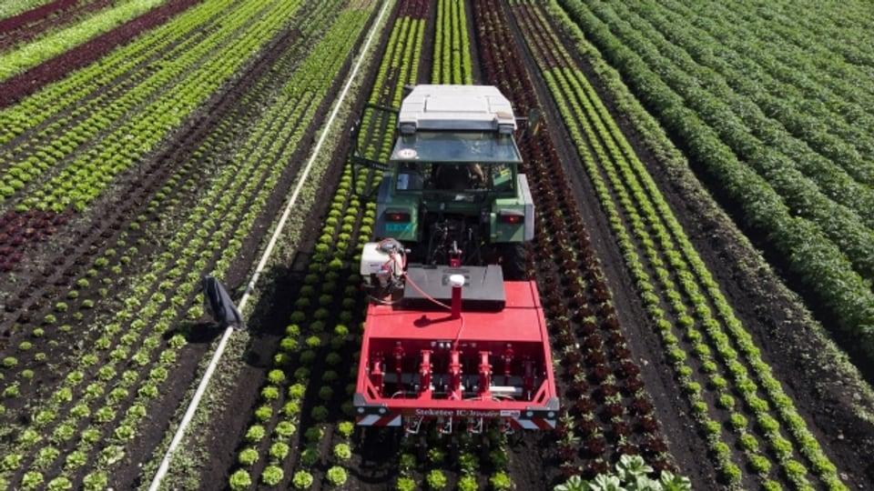 Ein Traktor mit dem Prototyp eines Pflanzenschutzroboters unterwegs auf einem Schweizer Feld.