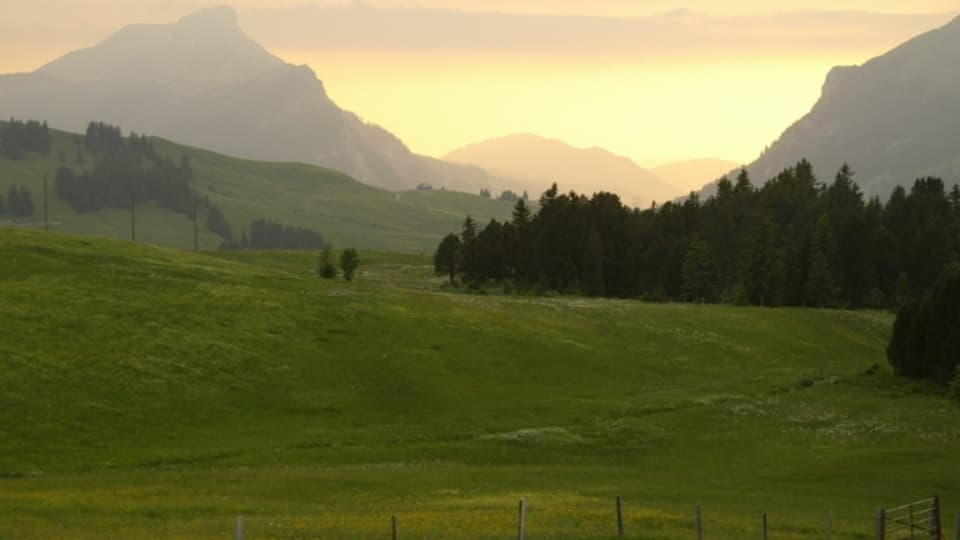 Hochmoor bei Sörenberg