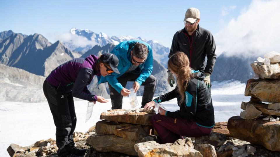 Archäologen bei der Arbeit im Auftrag des Kantons Uri.