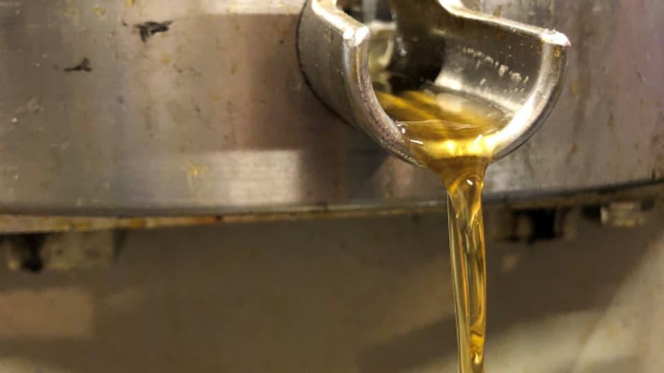 Hinter einem Liter Nussöl steckt viel Handarbeit.