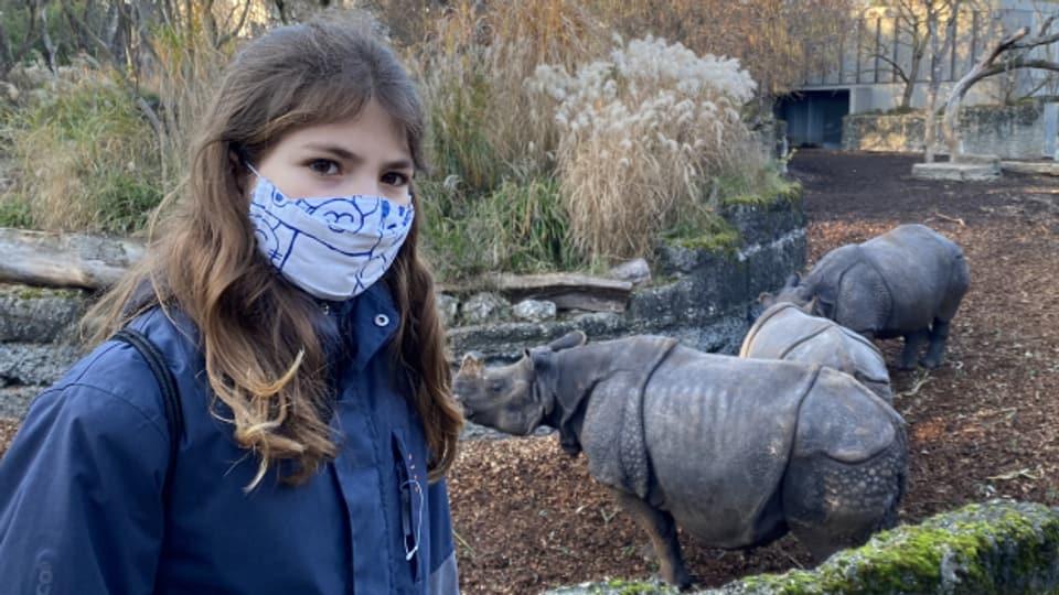 Goianna vor den Nashörnern