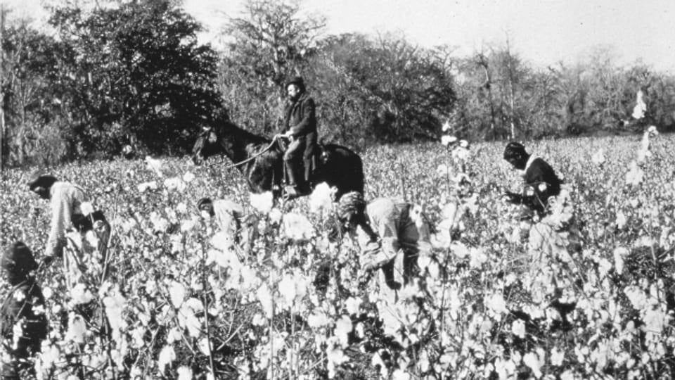 Heute lassen sich diverse direkte oder indirekte Schweizer Beteiligung am Sklavenhandel belegen.