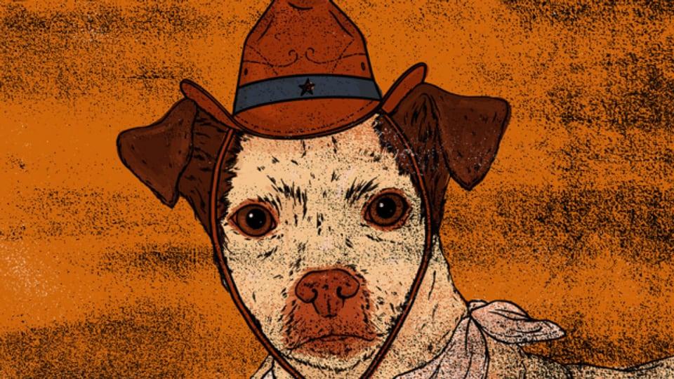 Beliebt in Countrysongs - Geschichten von Haus- und Nutztieren sowie Pferden.