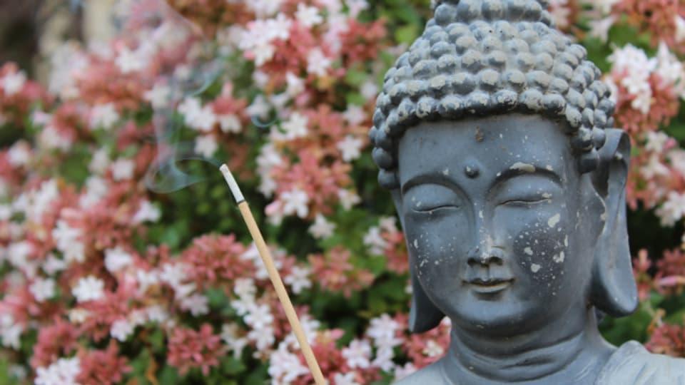 Ein Buddha im Garten, das ist in der Schweiz keine Seltenheit mehr. Im Grossverteiler ist der Buddha sehr günstig zu haben.