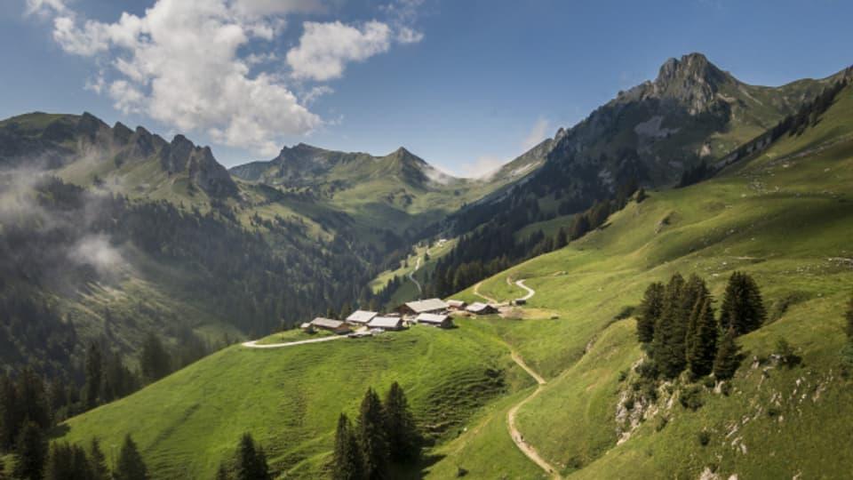 Grossvater Haueter würde seine Alp kaum wiedererkennen. Eine Strasse gab's früher nicht. Autos auf der Alp - undenkbar.