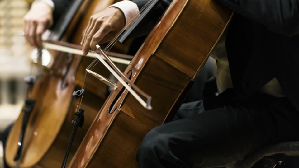 Cellisten des Zürcher Tonhalle Orchester stimmen ihre Instrumente