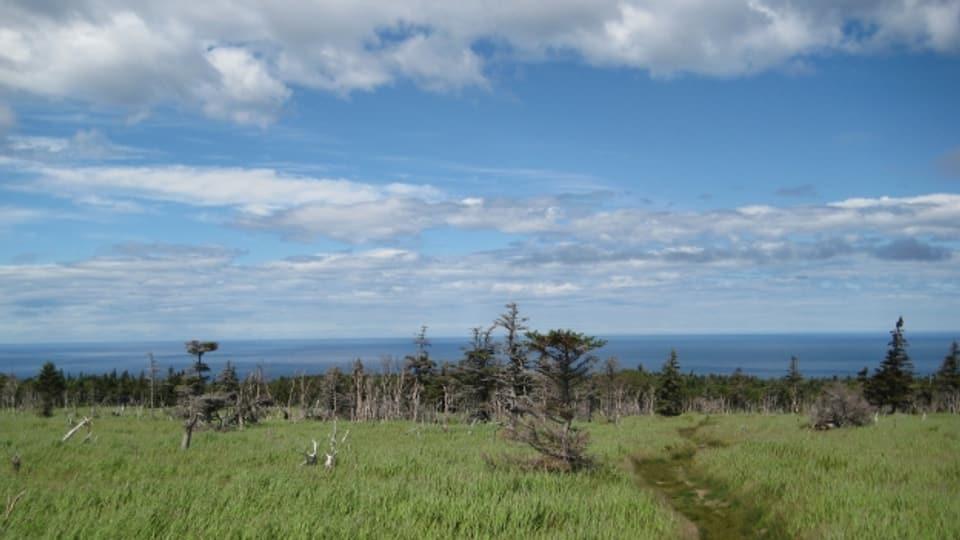 Ziel der Reise in ein neues Leben: Nova Scotia, Kanada.