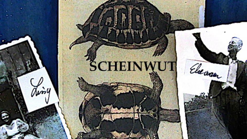 «Scheinwut» schliesst die Trilogie von Bettie I. Alfred.