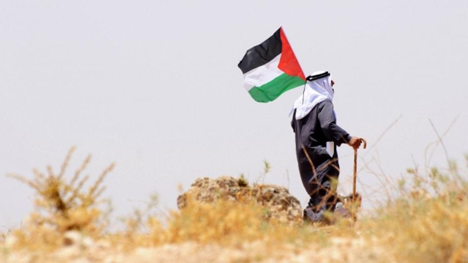 «Der Weg zur Quelle: Leben und Tod in Palästina»