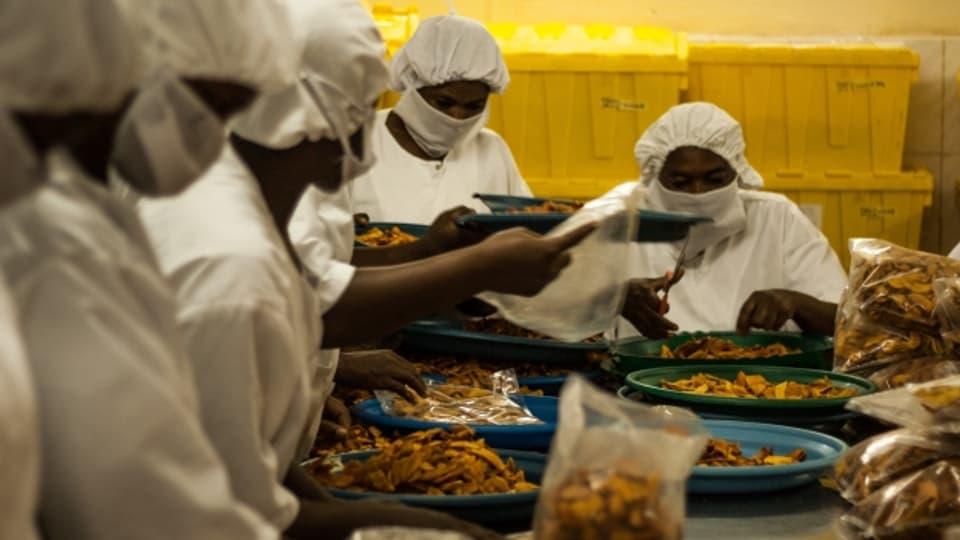 Diese Nüsse sind Fairtrade: eine Cashew-Nuss-Fabrik in Burkina Faso.
