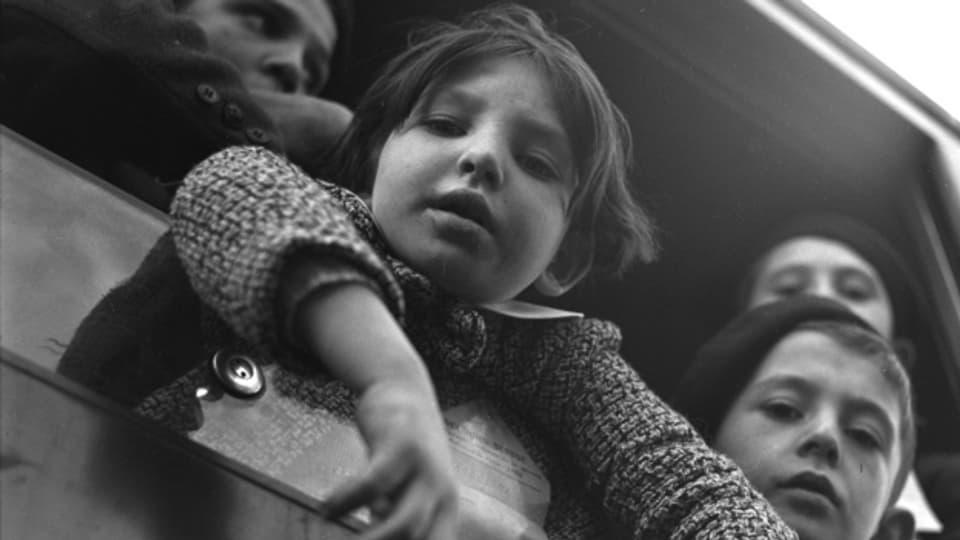 Kinder, die aus dem Zugschauen.