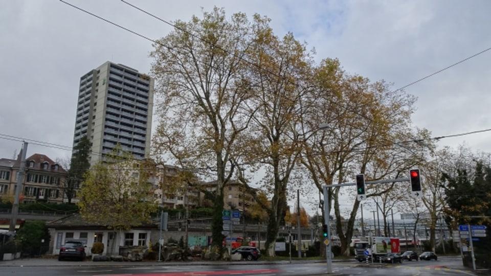 Verdichtetes Bauen vs. Durchlüftung: In der Stadt prallen viele Bedürfnisse aufeinander.