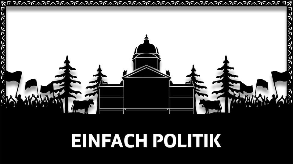 Einfach Politik