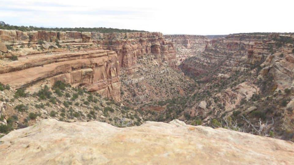 Mule Canyon im Bears Ears National Monument.
