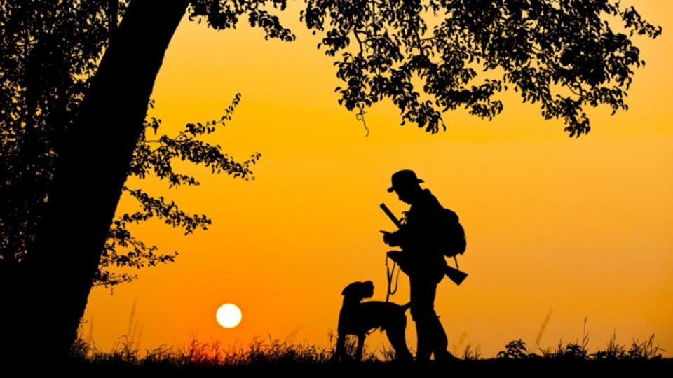 Jäger und Hund vor Sonnenuntergang.