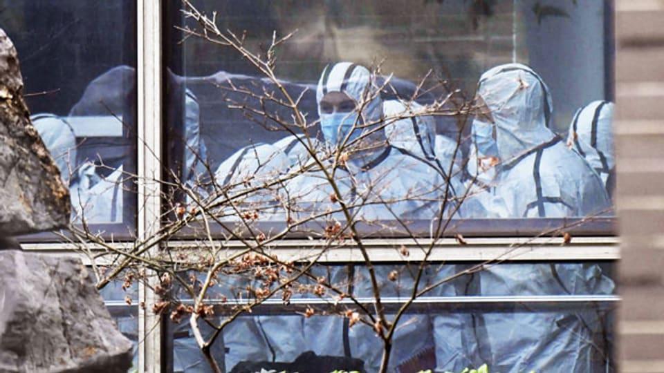 Mitglieder der WHO-Untersuchung der Coronavirus-Ursprünge in Wuhan, China.