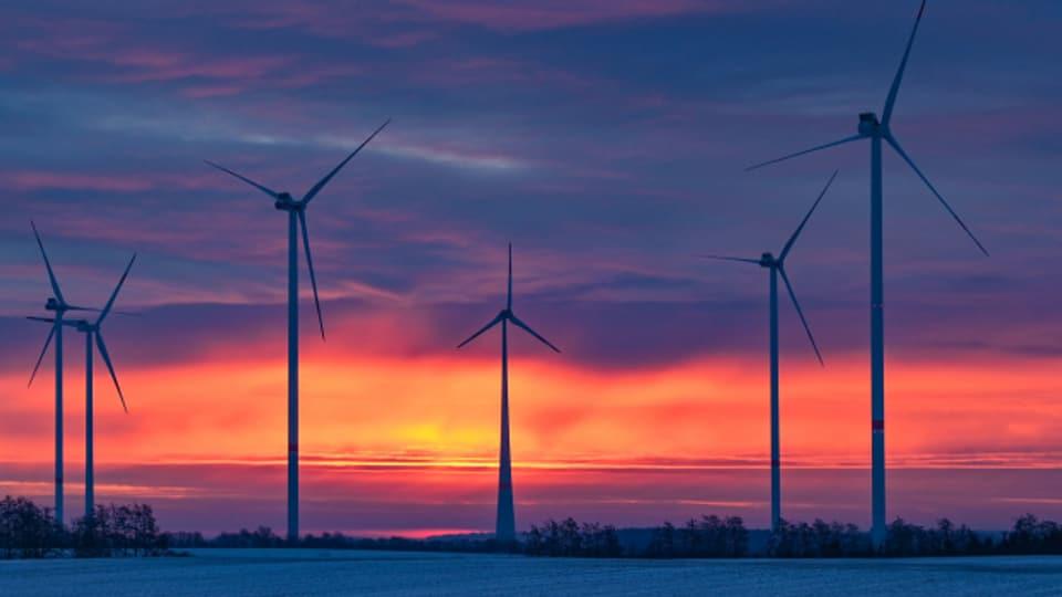 Tragen bei zum saubereren Strommix: Windräder im Bundesland Brandenburg.