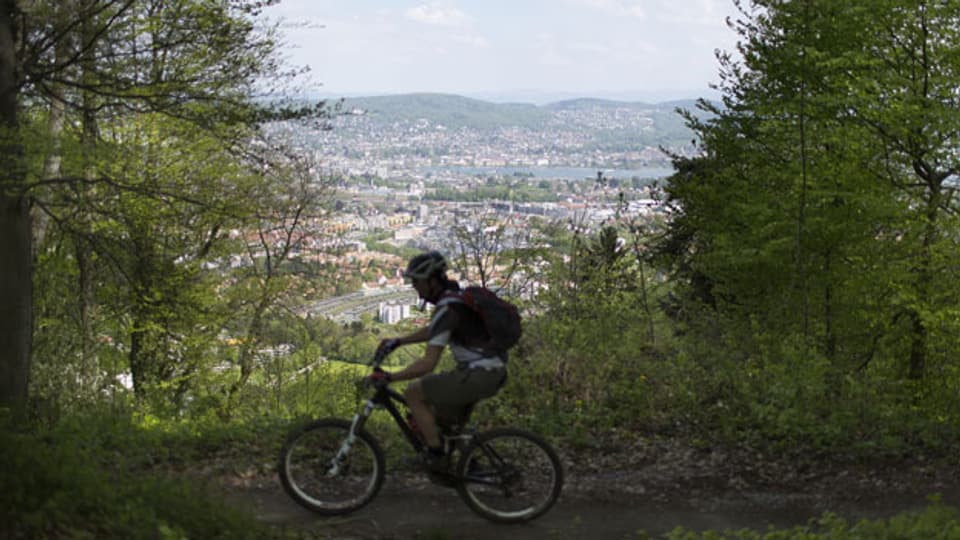Ein Mountainbiker fährt auf den Uetliberg, im Hintergrund das Seebecken der Stadt Zürich.
