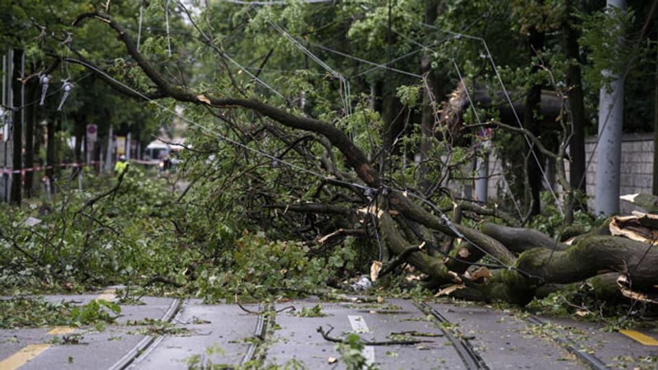 Bäume liegen auf der Strasse nach einem Unwetter in der Nacht, aufgenommen am 13. Juli 2021 in Zürich.