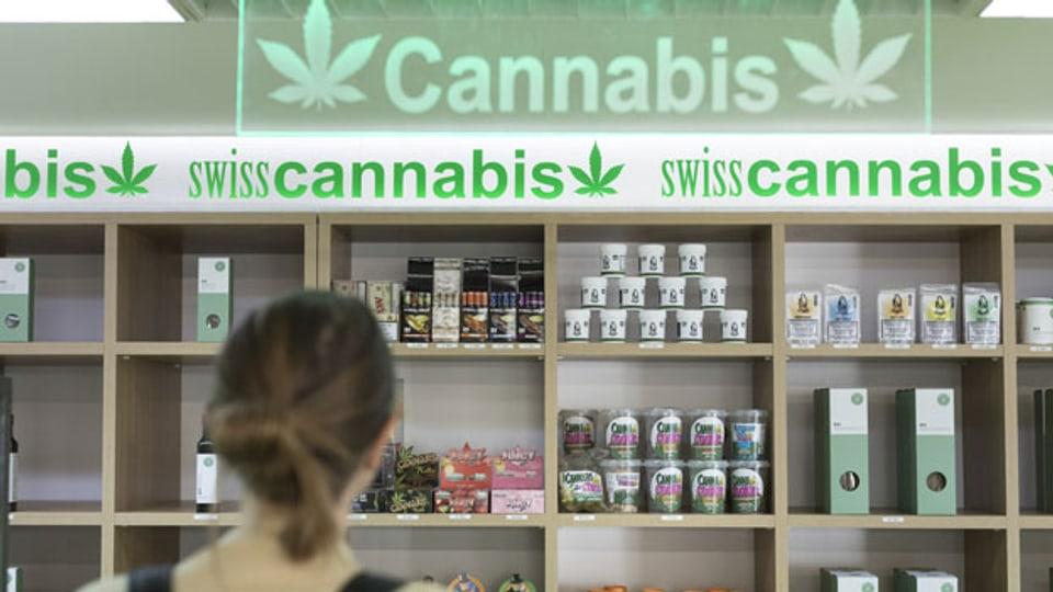Cannabis-Pilotprogramm in Schweizer Städten.