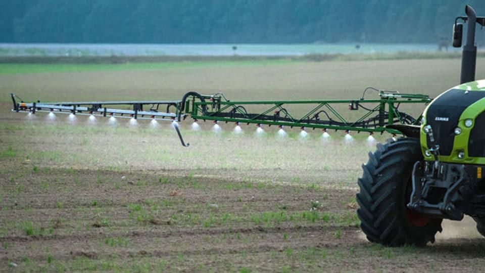 Die Zulassung des Pestizids Chlorpyrifos wird laut Bundesamtes für Landwirtschaft derzeit überprüft. Symbolbild.