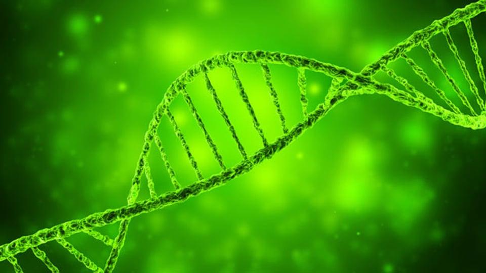 3D-Illustration eines DNA-Helix.