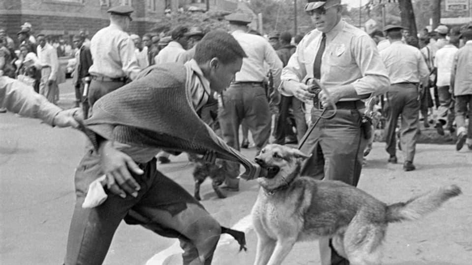 Bürgerrechtsproteste in Alabama 1963. Die Rassentrennung in den USA war ein Erbe des Sklaverei.