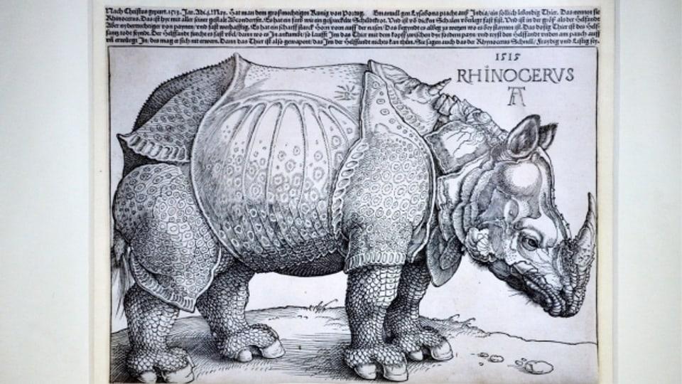 """Der Holzschnitt """"Rhinocerus"""" von Albrecht Dürer entstand 1515"""