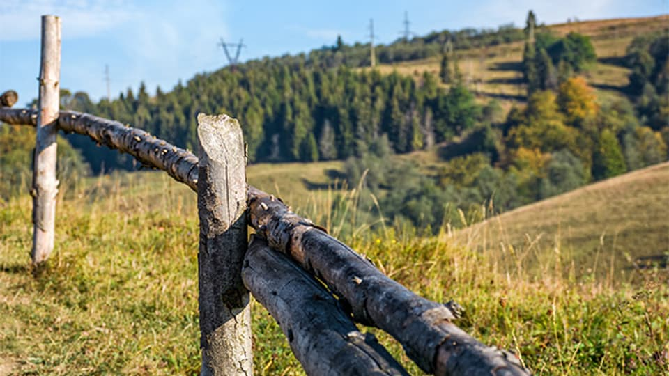 Ein Zaun zum Schutz vor weidenden Tieren.