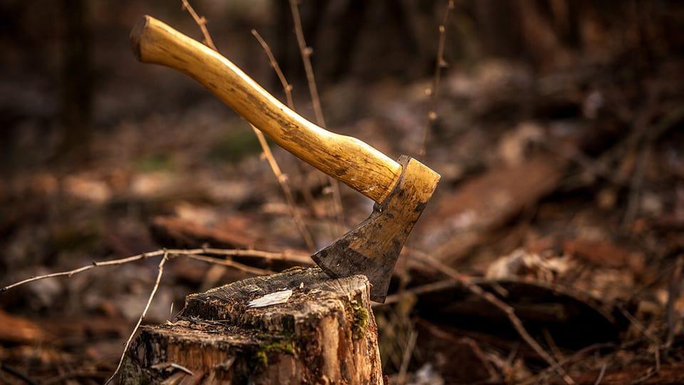 Die Arbeit im Wald war hart, brachte aber zumindest etwas Verdienst.