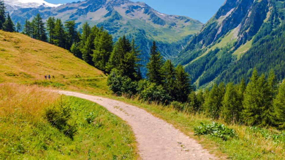 Der Jodlerweg St. Stephan ist während des Alpsommers bis circa Ende Oktober geöffnet.