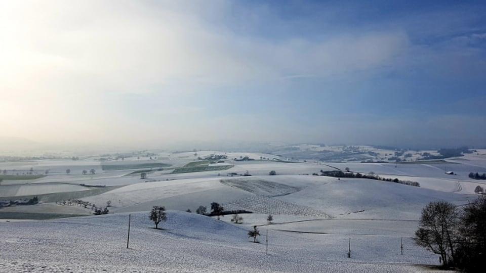 Das Hügelmassiv «Randen» im Kanton Schaffhausen ist bereits aus dem Jahr 1122 belegt.