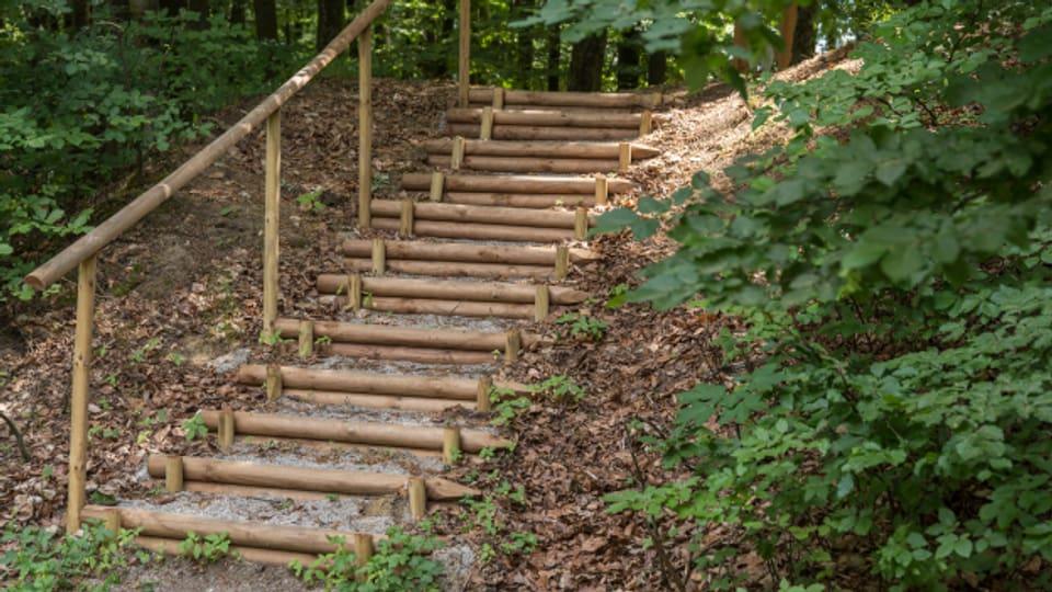 Die beiden Fundstellen der Hasenburg sind im Wald schwer zu finden.