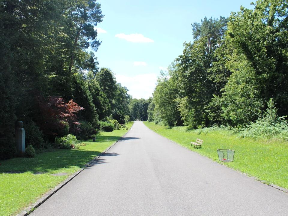 Strasse auf dem Friedhof.