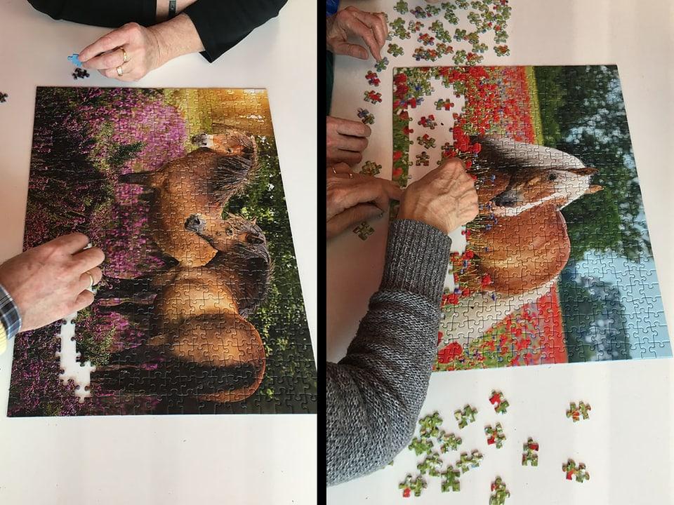 Puzzle mit Pferden.