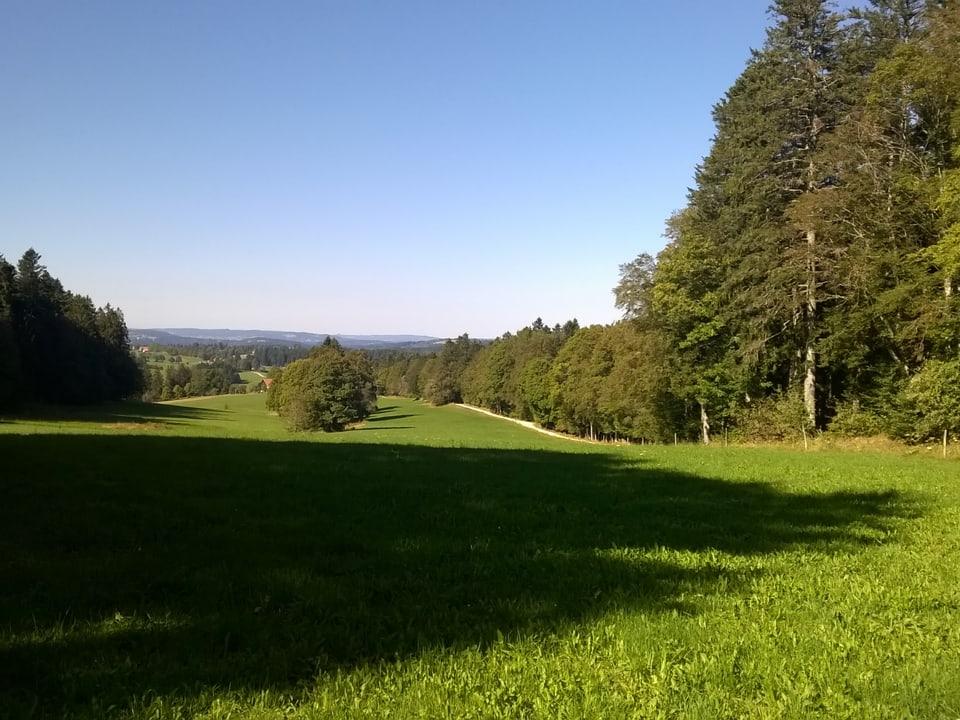 Landschaft in den Freibergen.