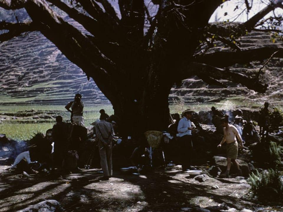 Gruppe rastet unter einem Baum.