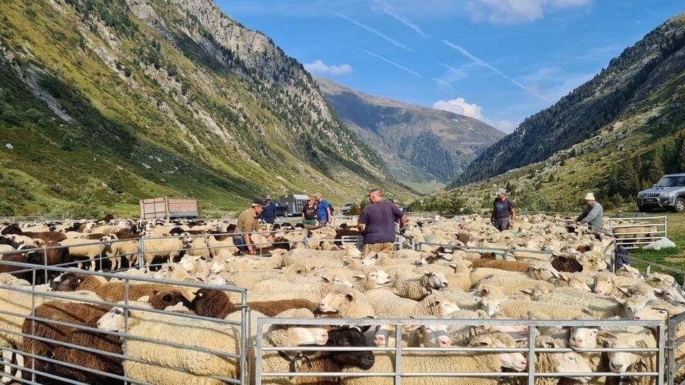 Alps: Stagiun tut normala malgrà aura schletta