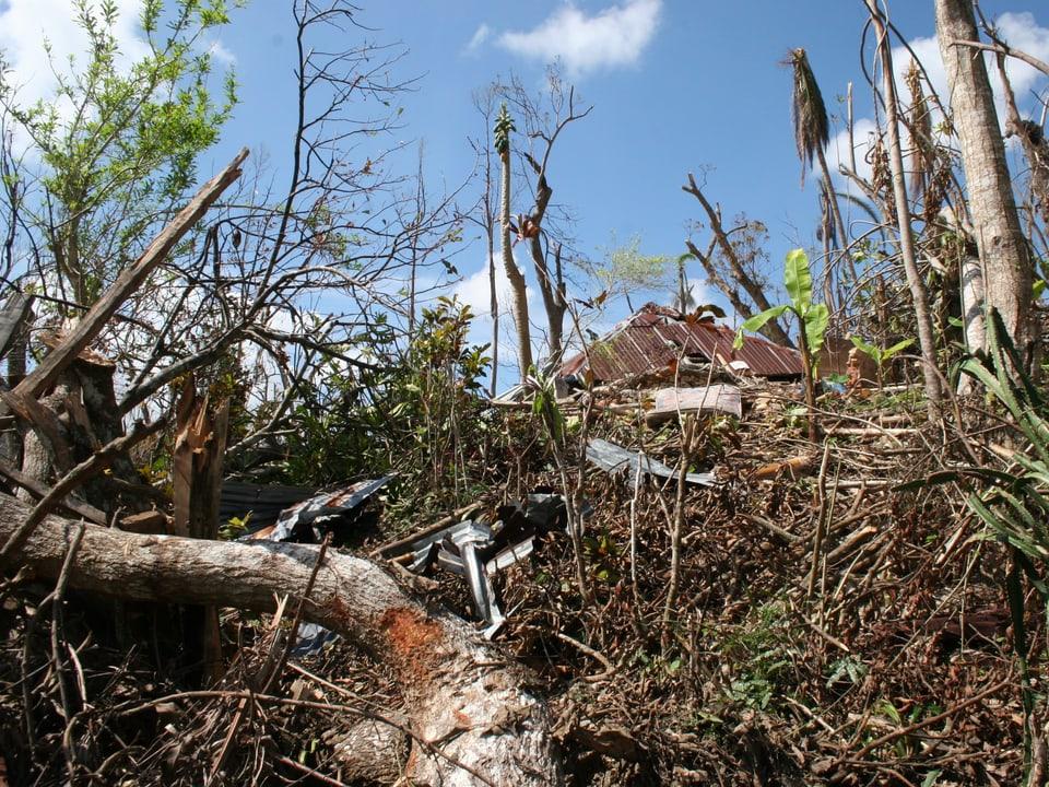 Der Südwesten Haitis, der einstigen «Perle der Karibik» liegt nach dem Wirbelsturm am Boden.