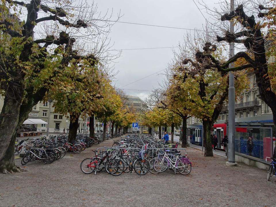 Der Hirschengraben in Bern