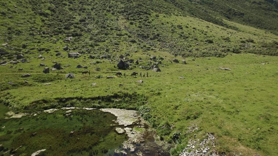 Aufnahme von weit weg, grüne Wiese und Bergsee, klein ist eine Reisegruppe auszumachen