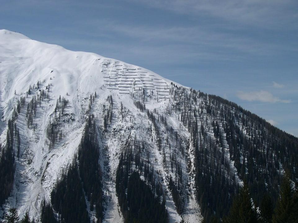 Lawinen in den Wäldern bei Davos.