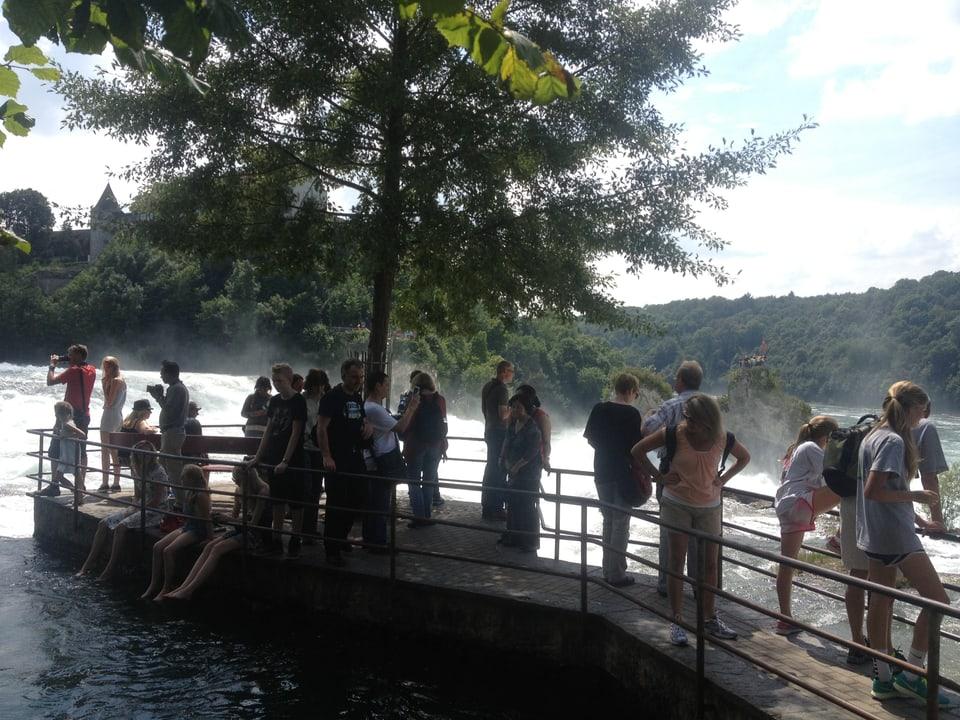 Rheinfall bei Neuhasen
