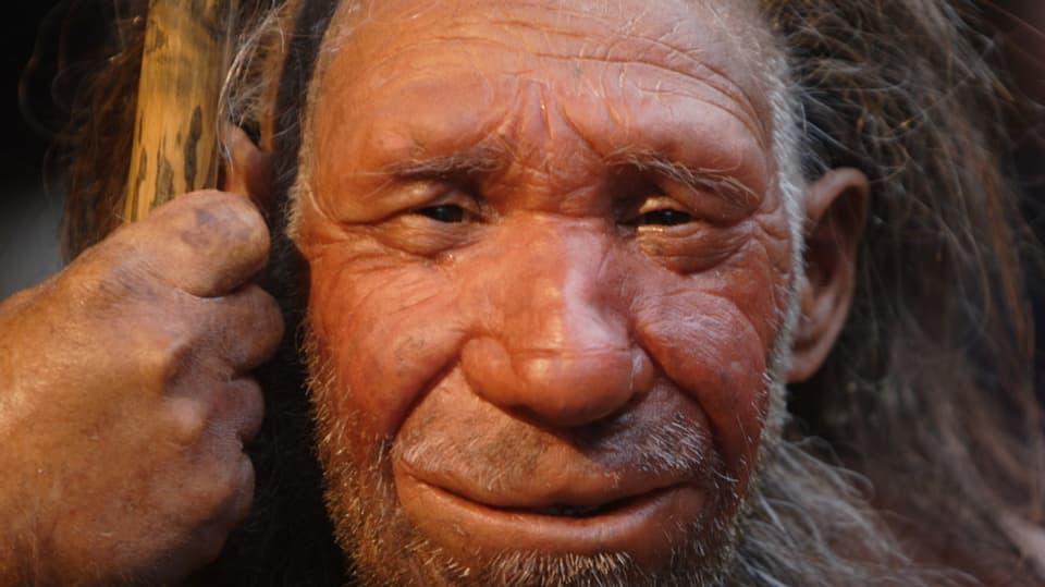 Denisovaner