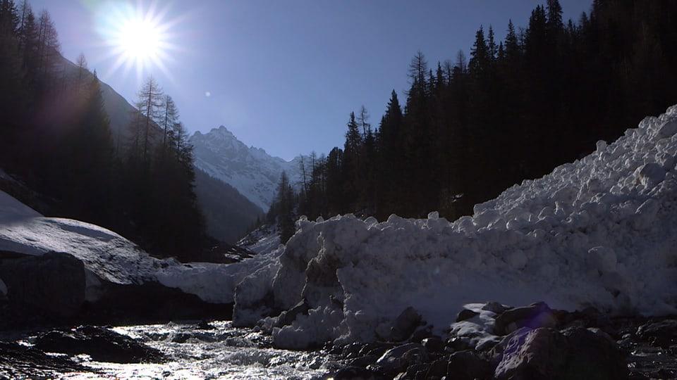 Wilde Schönheit: Natur pur ohne Eingriffe des Menschen soll im Schweizerischen Nationalpark für alle Zukunft erhalten bleiben. (Schöne Landschaft, Sonnenschein)