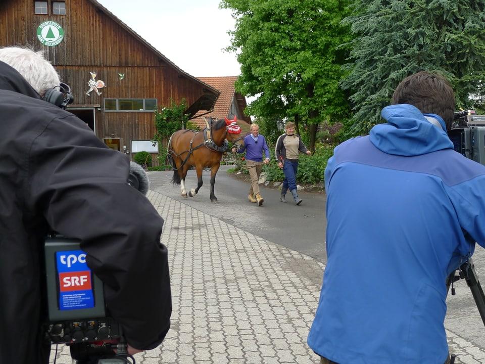 Die beiden Kameraleute Peter Ramseier und Ueli Haberstich filmen den Auftritt von Katharina Schelbert und Kurt Aeschbacher, der den Freiberger mit Kummet führt.