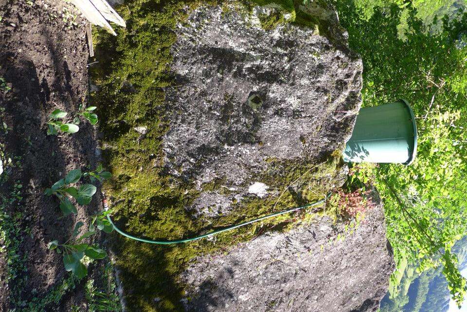 Ein Plastikeimer steht auf enem Fels oberhalb des Gemüsegartens. Ein Schlauch führt runter in den Garten.