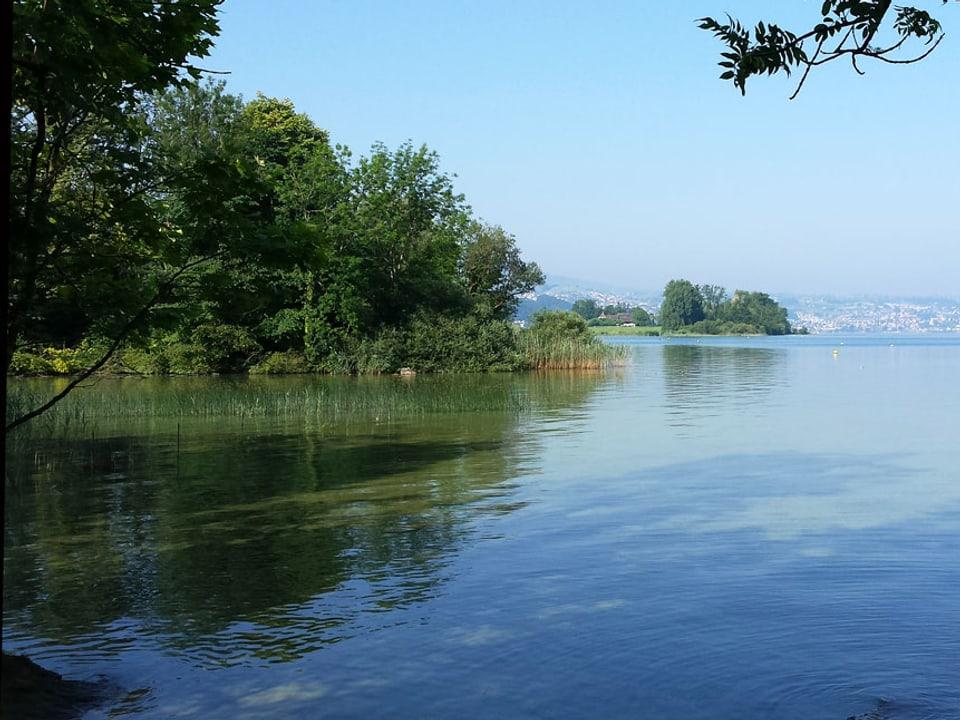 Uferzone der Insel.