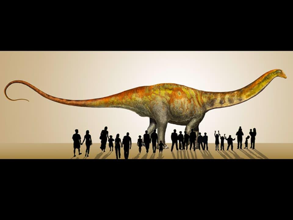 Rekonstruktionsbild des Sauropoden.